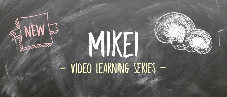 Slide - Mikei Learning Series